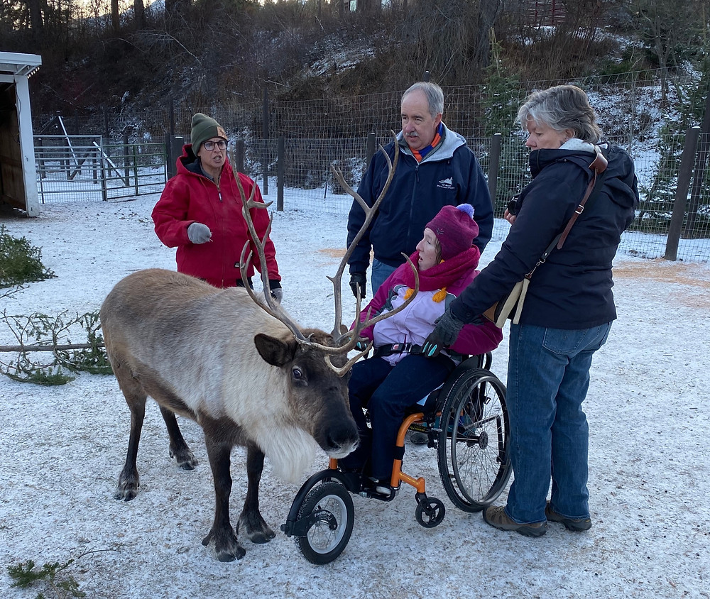 My sister sits in her wheelchair with my parents standing around her. A reindeer is standing in front of them, looking at the camera. A staff member at the reindeer farm is talking about the reindeer.