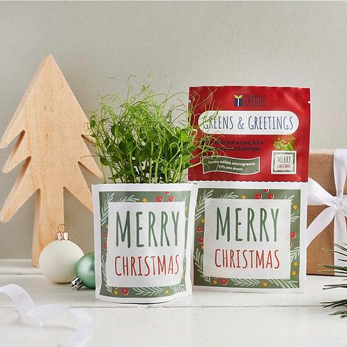 Greens & Greetings: Merry Christmas