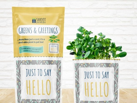 What is a Greens & Greeting?