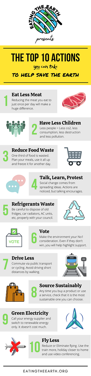 Top 10 sustainable environment actions save earth