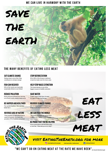 save the planet eat less meat poster