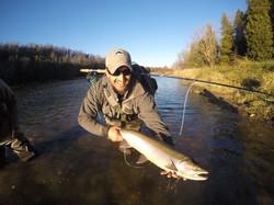 Jay Cashubac with Maitland River Steelhead  Steelhead