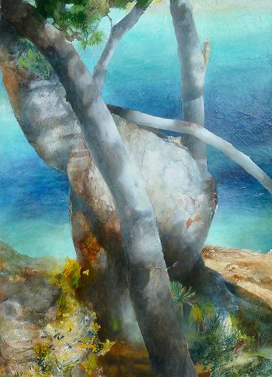 Hélène Legrand / L'arbre plié du Layet