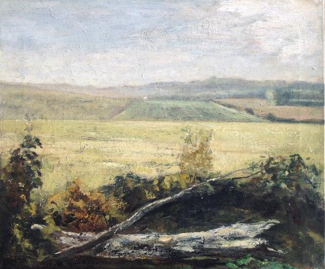 André Boubounelle / The Fields of Villepreux