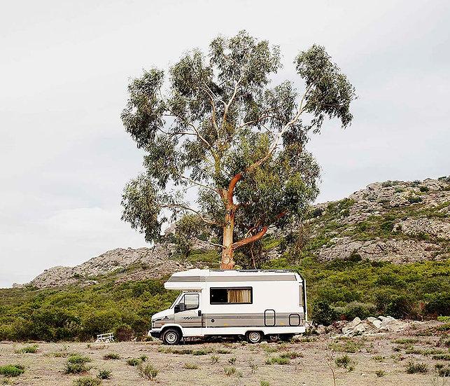 Rémy Lidereau / Modern Safari Chapitre Corse, N°16