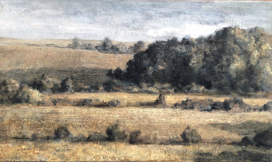 André Boubounelle / Staged fields in Grignon, small version