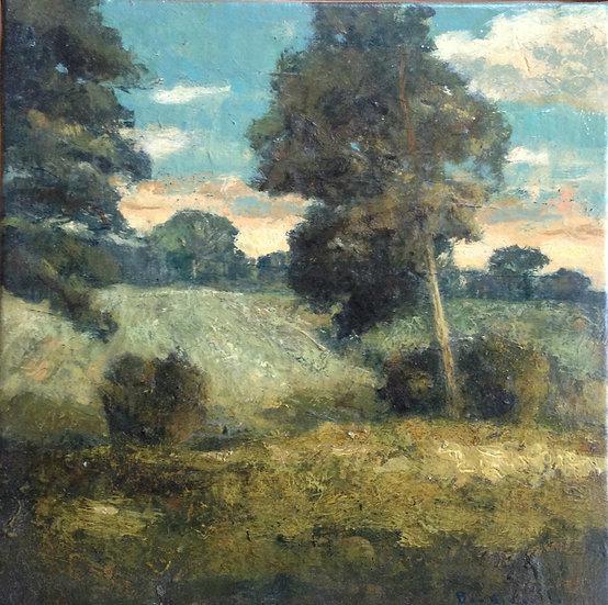 André Boubounelle / Forêt de Rambouillet