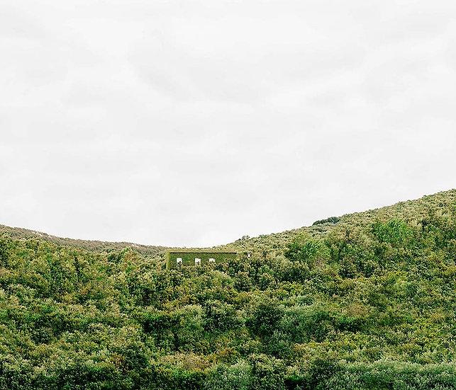 Rémy Lidereau / Modern Safari Chapitre Corse, N°14