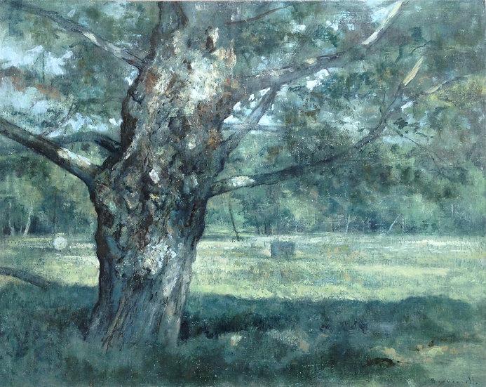 André Boubounelle / Le Grand Chêne à La Millière