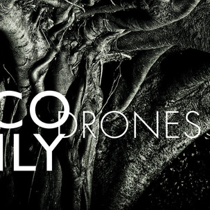 Nico Muly_Drones.jpeg