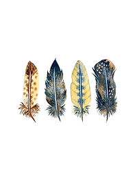 Feathers - IMAGE.jpg