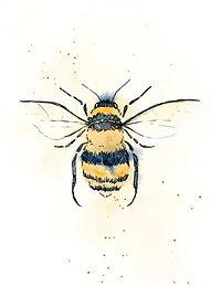 Bee - Workshop - Image.jpg
