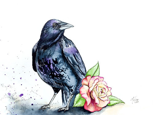 Crow and Rose