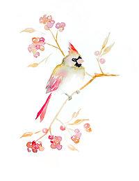 Coral Cardinal - Workshop - Image.jpg