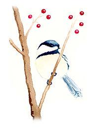 Chickadee - Image.jpg