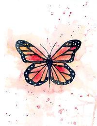 Monarch - Workshop - image.jpg