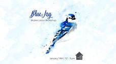 Blue Jay - Workshop - Jan-14-2020.jpg