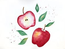 Apples for Workshop.jpg