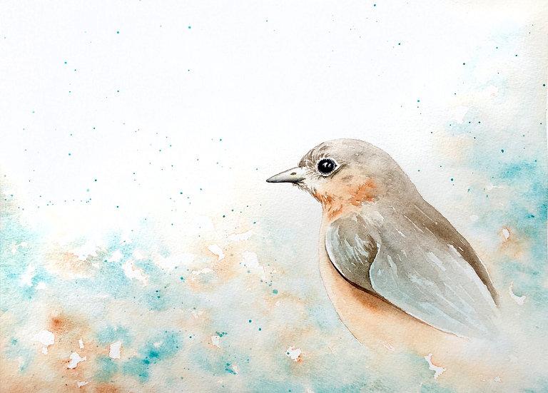 Lady Blue Bird