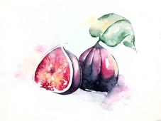 Figs for Workshop.jpg