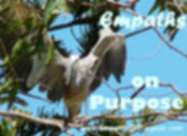 Heron Angel Wings Purpose Empath 2.jpg