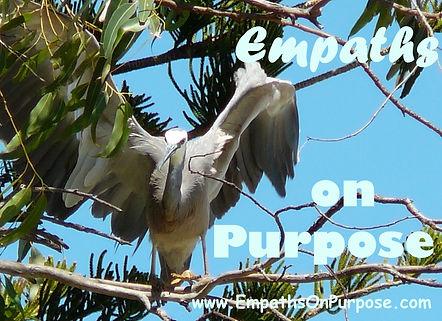 Heron Angel Wings Purpose Empath 2.jpg