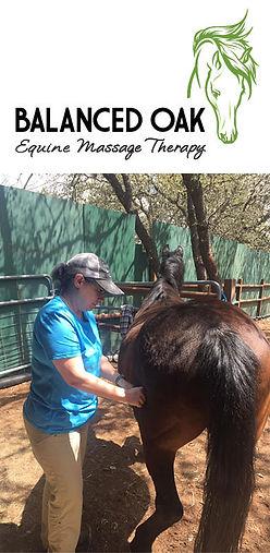 equine_massage_image.jpg