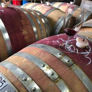 Pinot Noir Barrel