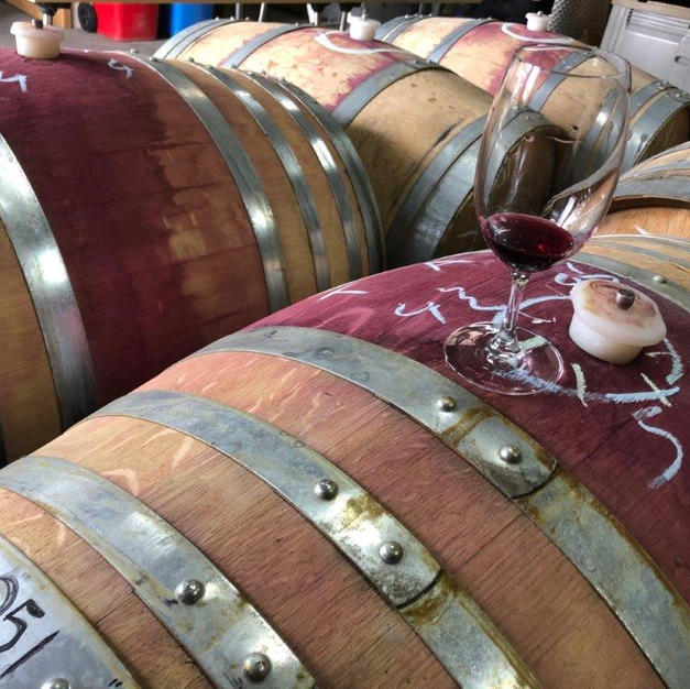 Pinot Noir Barrel
