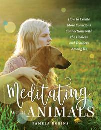 Meditating With Animals