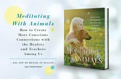 Meditating With Animals - Advert