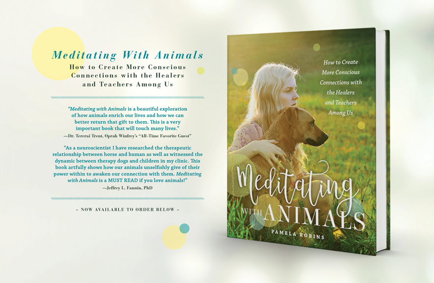 Meditating with Animals - Website