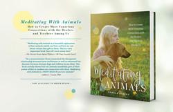 Meditating with Animals - Website