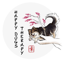 Happy Dog Therapy éducation chien