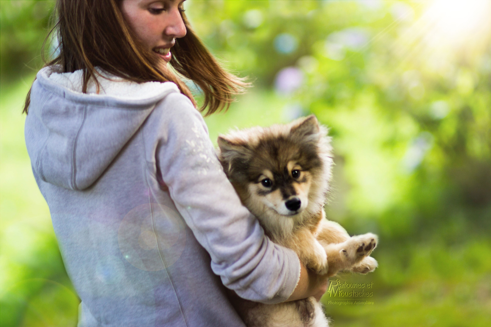 Happy Dogs Therapy éducation canine