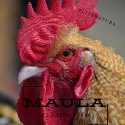 Maula