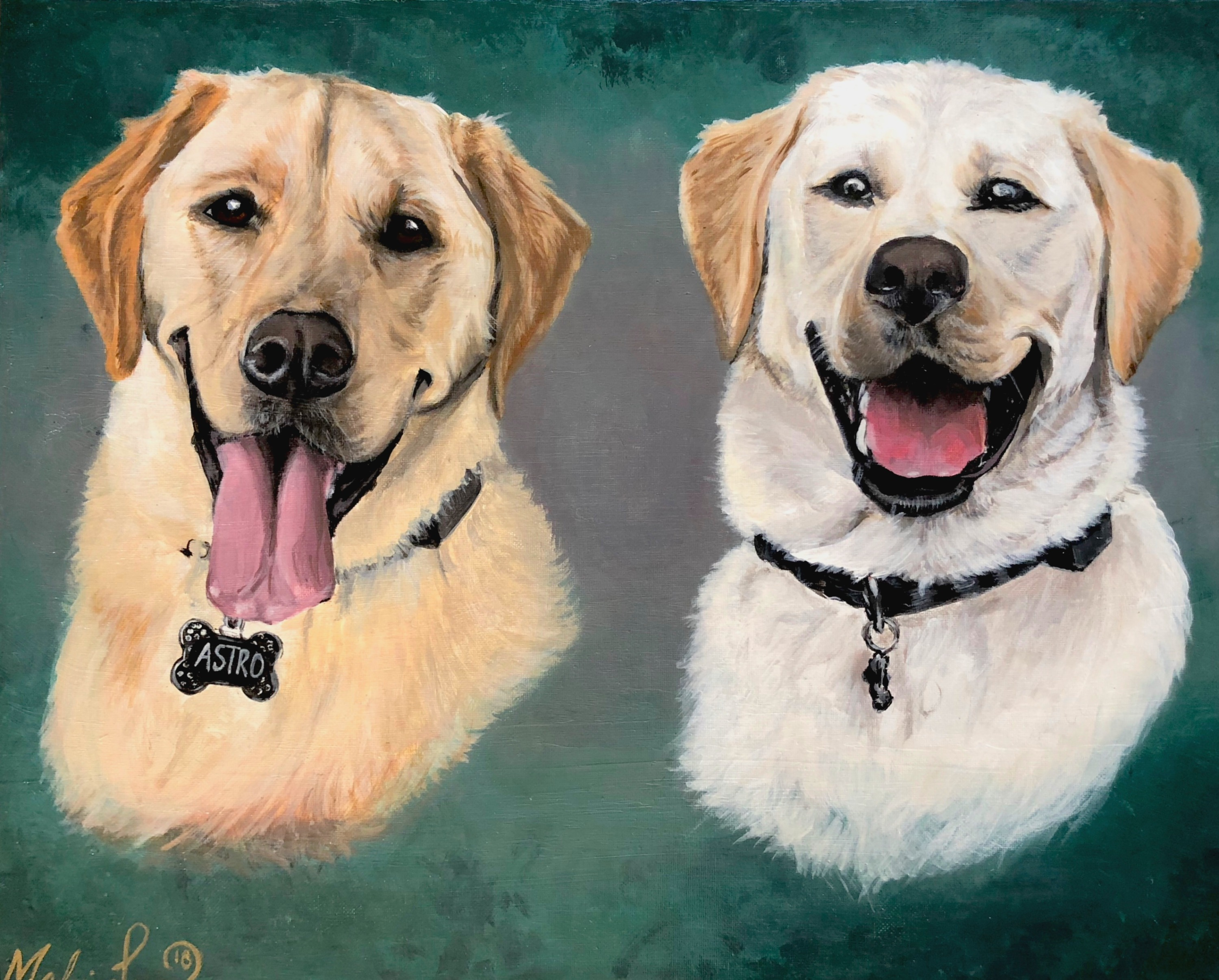 """Astro and Comet"" commissioned portrait"
