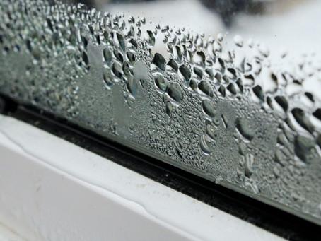 Condensation Around Your Windows?