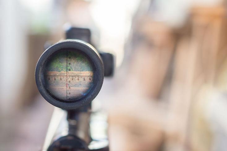 rifle target view.jpg