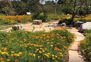 MB Botanic Gardens