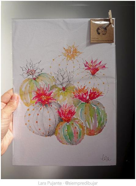 Cactus 3 cuadro - Lara Pujante.jpg