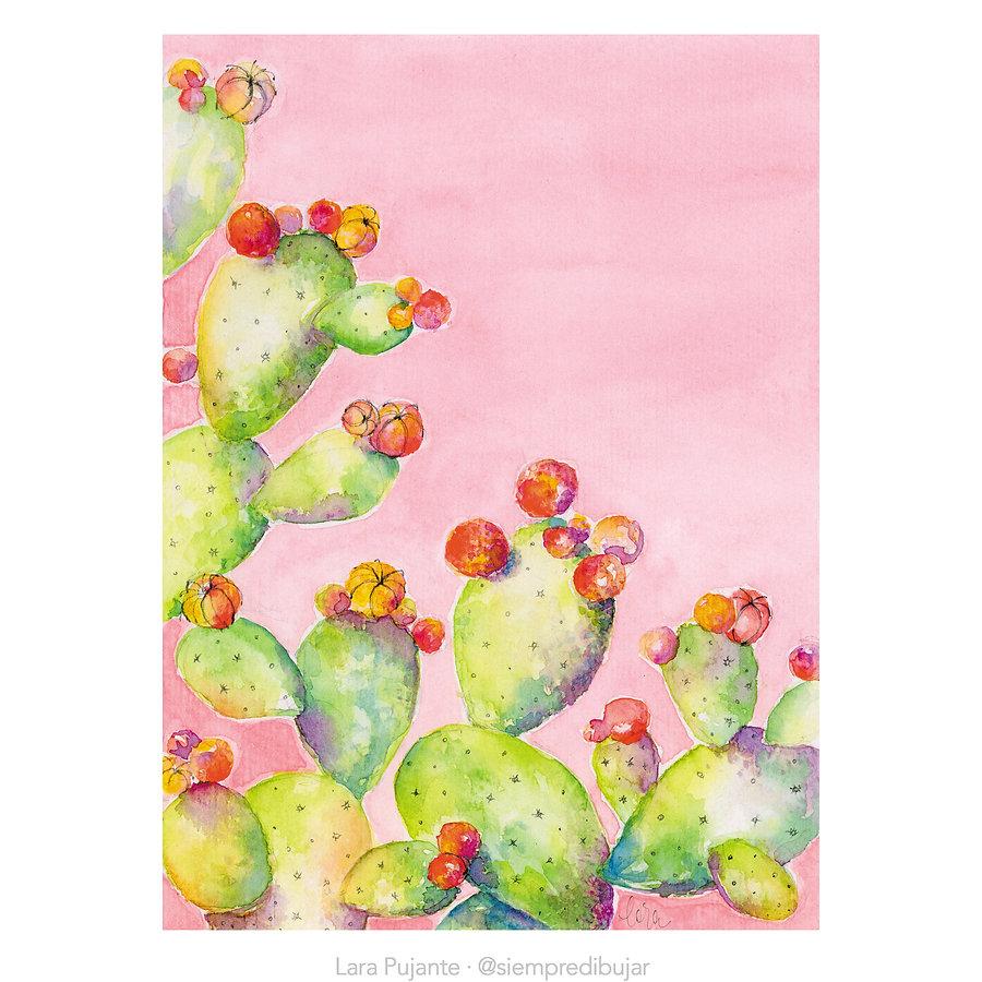 Cactus 3 - Lara Pujante.jpg