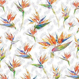 Pattern Strelizia - Lara Pujante 4.jpg