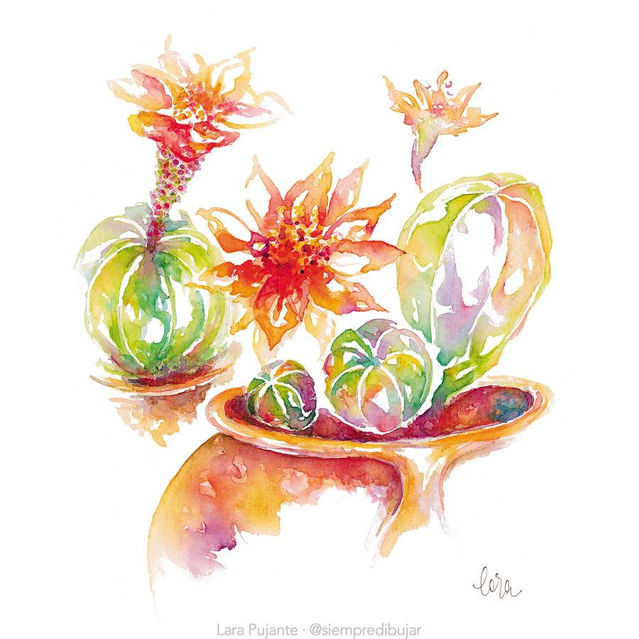 Cactus 1 - Lara Pujante.jpg