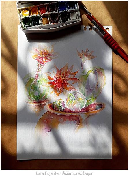 Cactus 1a - Lara Pujante.jpg