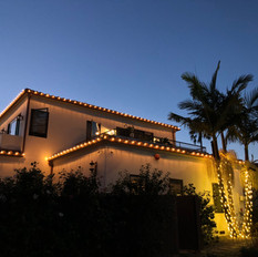 Warm White Roofline and Palm