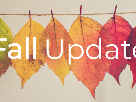 After-The-Bell Fall 2020 Update