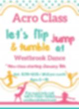 Acro Class_Flyer_Jan 2020 (2).jpg