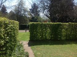 Privater Gartenanteil