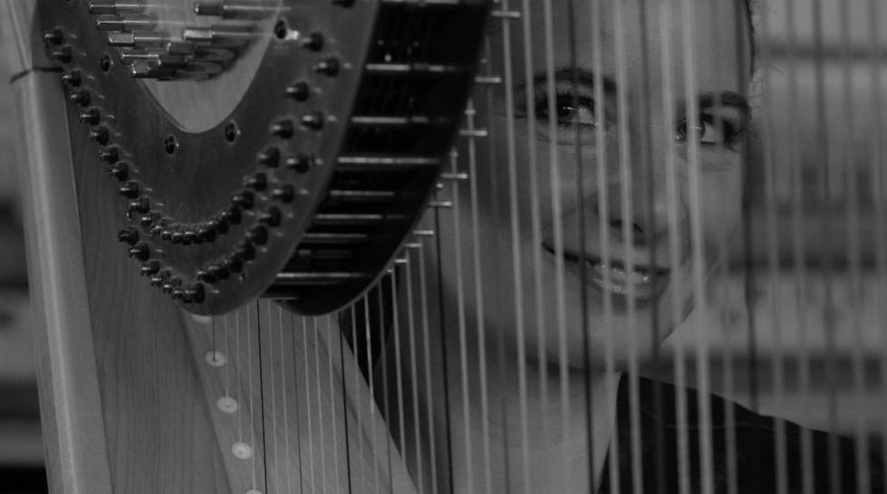 Diana Emese Gal - Harpist on Melancholia